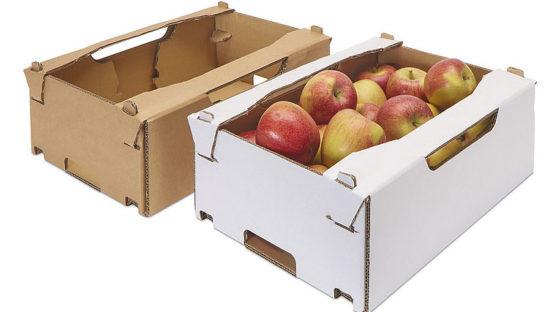 Embalajes de cartón para frutas y verduras