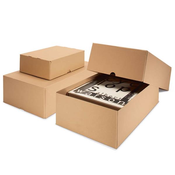 La diversidad de las cajas de cartón con tapa